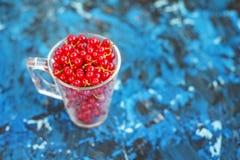 红浆果在蓝色背景的一个玻璃杯子 顶视图 免版税库存图片