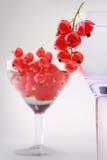 红浆果葡萄酒杯仍然寿命 免版税库存图片