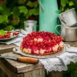 红浆果颠倒的Bundt蛋糕 免版税库存照片