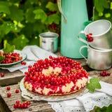 红浆果颠倒的Bundt蛋糕 库存照片