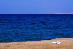 红海在洪加达埃及红海2013年12月 库存照片