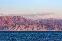 红海岩石海岸线在沙特阿拉伯 库存照片