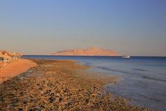 红海海岸 图库摄影