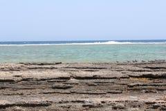 红海海滩红海埃及 免版税库存照片