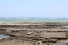 红海海滩红海埃及 库存图片