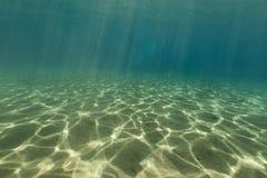 红海的水下的风景 库存图片