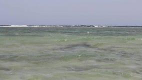 红海螃蟹关闭  股票录像