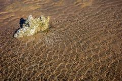 红海起波纹岩石 库存图片