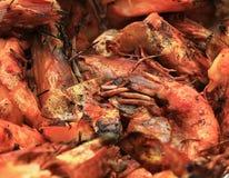 红润红色虾油煎了烤海鲜开胃菜 免版税库存照片