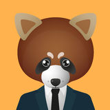 红熊猫具体化佩带的衣服 库存图片