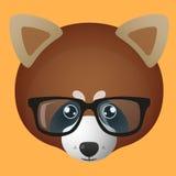 红熊猫具体化佩带的玻璃 库存照片