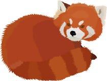 红熊猫动画片样式的传染媒介例证 免版税库存图片