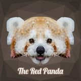 红熊猫头多角形传染媒介 免版税库存照片