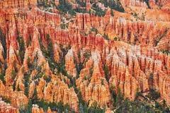红砂岩在布莱斯峡谷国家公园不祥在犹他,美国 库存图片