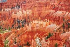 红砂岩在布莱斯峡谷国家公园不祥在犹他,美国 免版税库存照片