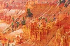 红砂岩在布莱斯峡谷国家公园不祥在犹他,美国 免版税库存图片