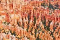 红砂岩在布莱斯峡谷国家公园不祥在犹他,美国 免版税图库摄影