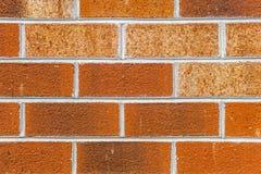 红砖在砖的墙壁背景12 库存图片