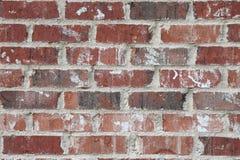 红砖墙壁特写镜头 库存照片