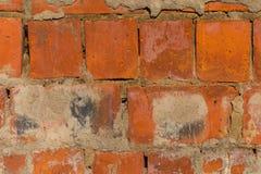 红砖背景纹理  库存图片