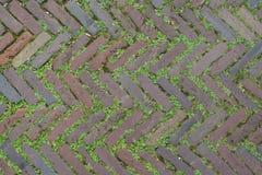红砖街道横跨人字形背景被安排的路铺 免版税库存照片