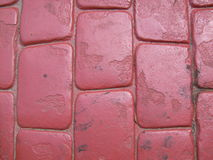 红砖道路 库存图片