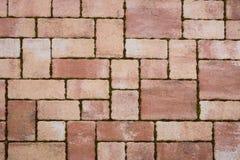 红砖铺路石 免版税库存图片