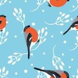 红腹灰雀和巴巴丽分支无缝的样式 向量背景 库存图片