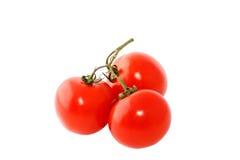 红色三蕃茄 免版税库存照片