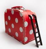 红色与一架黑梯子的盒白色豌豆 图库摄影