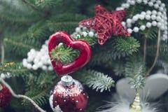 红色中看不中用的物品和白色小珠在杉树brances 免版税库存照片