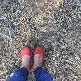 红色乘坐的鞋子 库存照片