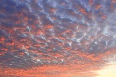 绯红色云彩在清早 免版税库存照片