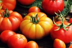 红色五颜六色的蕃茄-,黄色,橙色 收获菜烹调构想 免版税库存图片