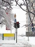红色信号灯冬天 免版税库存图片