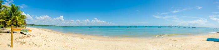 红色冠海滩美好的全景在波尔图Seguro在巴西在巴伊亚,离开,与一些渔船,椰子树 免版税库存照片