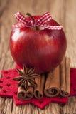 红色冬天苹果 图库摄影
