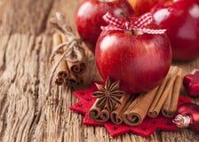 红色冬天苹果 免版税库存照片