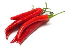 红色冷颤的胡椒 库存图片
