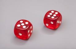 红色切成小方块 免版税图库摄影