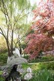 红色叶子和桥梁 免版税图库摄影