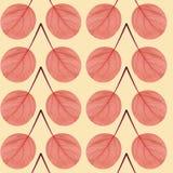 红色叶子的无缝的样式 免版税库存照片