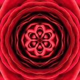 红色同心花中心。坛场万花筒设计 免版税库存照片