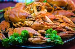 红色和开胃煮沸的小龙虾 库存图片