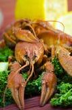 红色和开胃煮沸的小龙虾 免版税库存照片