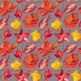 红色和橙色秋叶背景 水彩无缝的样式例证 库存照片