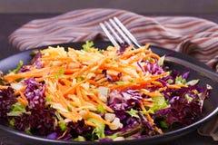 红色和白椰菜、红萝卜、莴苣、春天葱、坚果和种子沙拉 免版税图库摄影