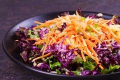 红色和白椰菜、红萝卜、莴苣、春天葱、坚果和种子沙拉 免版税库存图片