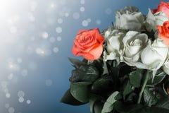 红色和白玫瑰花束  免版税库存图片
