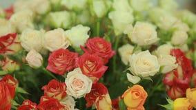 红色和白玫瑰,卖花人妇女明亮的五颜六色的花束会集花束 影视素材